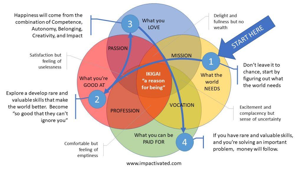 Impact and purpose with Ikigai